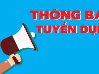 Tuyển dụng Trình dược viên Hà Nội, Vĩnh Phúc, Thái Nguyên, Tuyên Quang, Bắc Ninh